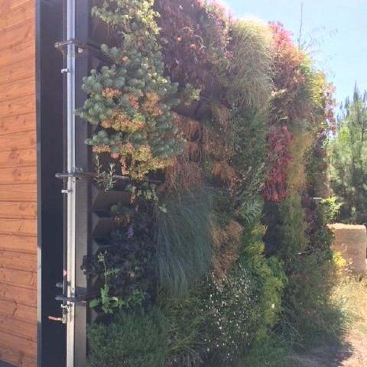 Fabrication et installation de support végétalisé